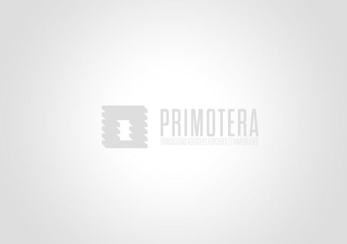 100 ha vendus dans l'aude ! Primotera